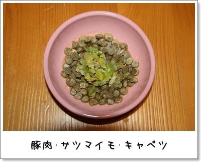 2009_1128_063432AA.jpg