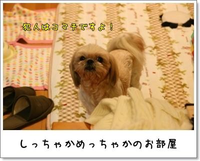 2009_1128_212241AA.jpg