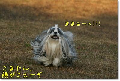2009_1201_154042AA.jpg