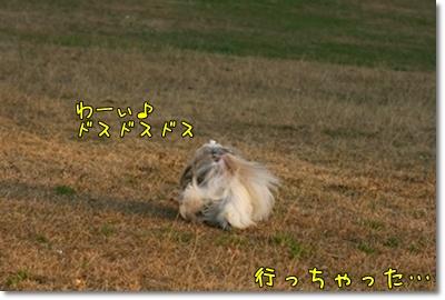 2009_1201_155304AA.jpg