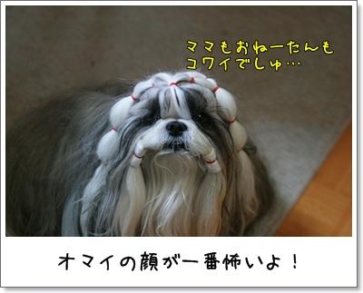 2009_1207_193956AA.jpg