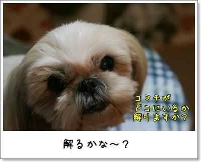 2009_1208_191831AA.jpg