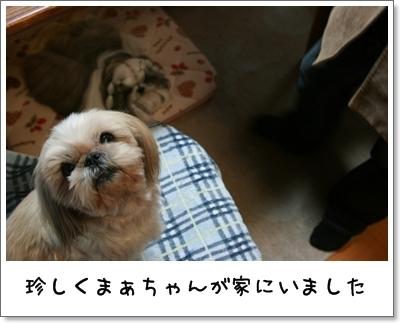 2009_1208_191938AA.jpg