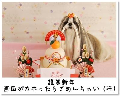 2010_0101_092416AA.jpg
