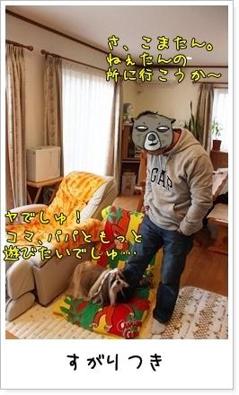 2010_0103_080803AA.jpg