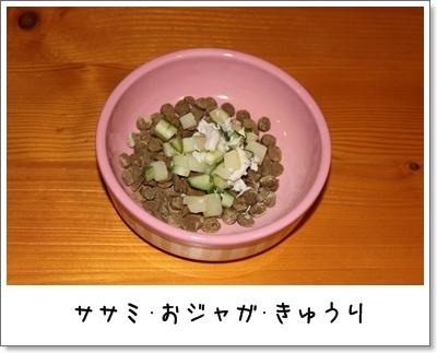 2010_0105_062934AA.jpg