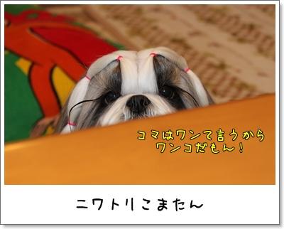 2010_0105_073605AA.jpg