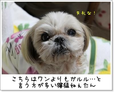 2010_0105_185549AA.jpg