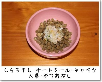 2010_0105_204810AA.jpg