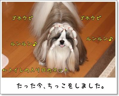 2010_0108_073840AA.jpg