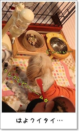 2010_0108_212425AA.jpg