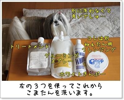 2010_0109_134930AA.jpg
