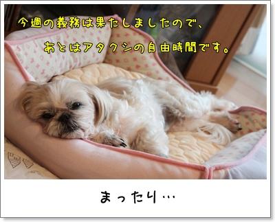2010_0109_155626AA.jpg
