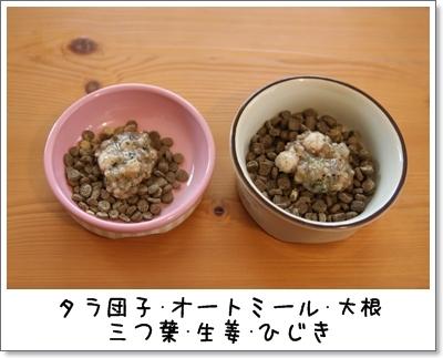 2010_0110_081503AA.jpg