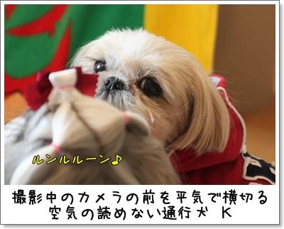 2010_0110_120128AA.jpg