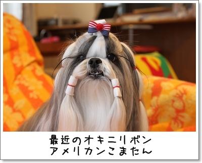 2010_0111_131017AA.jpg