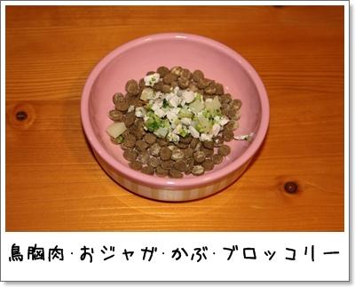 2010_0113_212745AA.jpg