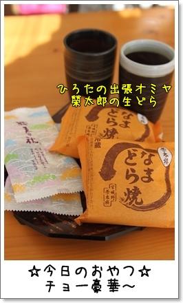 2010_0116_141734AA.jpg