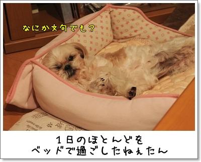 2010_0116_230551AA.jpg