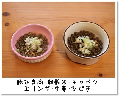 2010_0117_081656AA.jpg