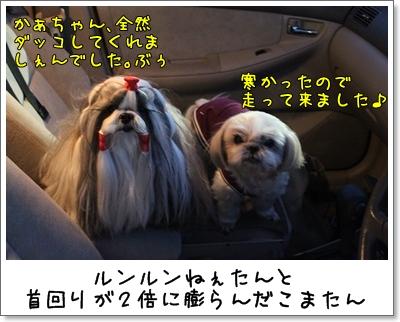 2010_0117_170828AA.jpg