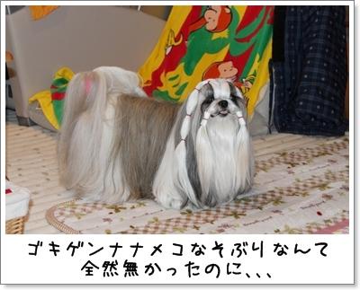 2010_0118_073648AA.jpg