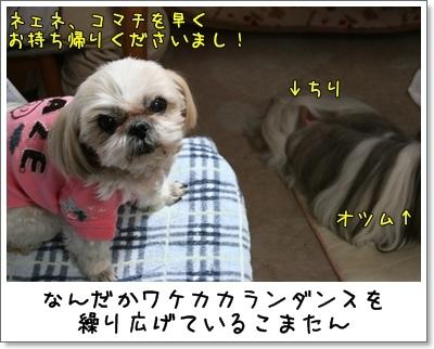 2010_0118_194659AA.jpg