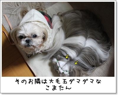 2010_0119_182542AA.jpg