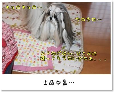 2010_0120_074118AA.jpg