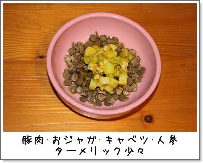 2010_0120_213227AA.jpg