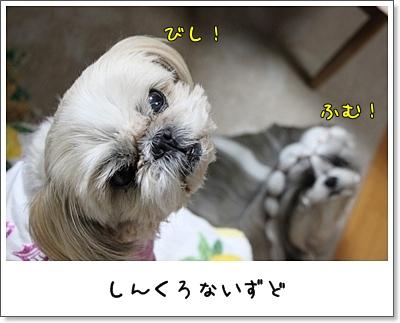 2010_0121_190901AA.jpg