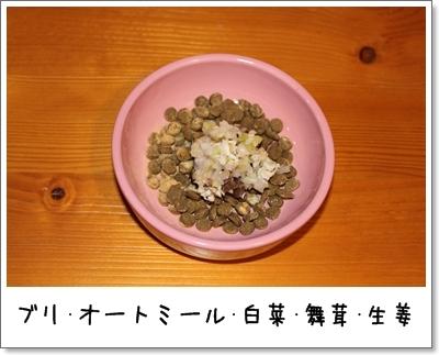 2010_0121_213133AA.jpg