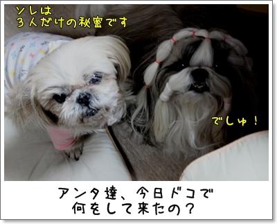 2010_0125_192535AA.jpg