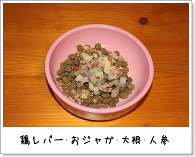 2010_0125_213633AA.jpg