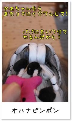 2010_0126_074112AA.jpg