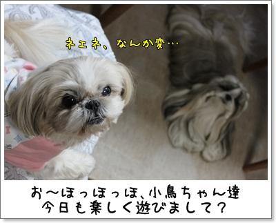 2010_0127_192833AA.jpg