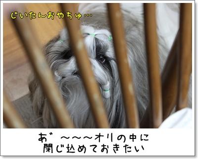 2010_0127_193113AA.jpg