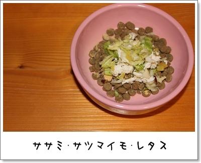 2010_0128_063329AA.jpg