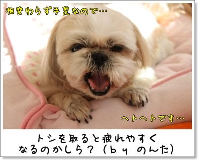 2010_0130_132419AA.jpg