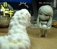 20100707_sawa_c.jpg