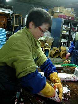 新巻鮭入門 3