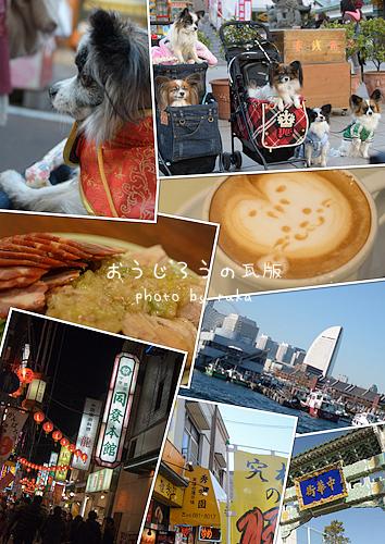 01*1-中華街表紙