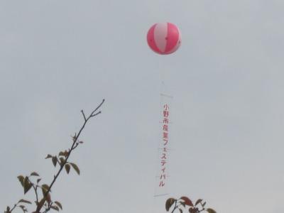 10.10.23 小野市産業フェスティバル (6)