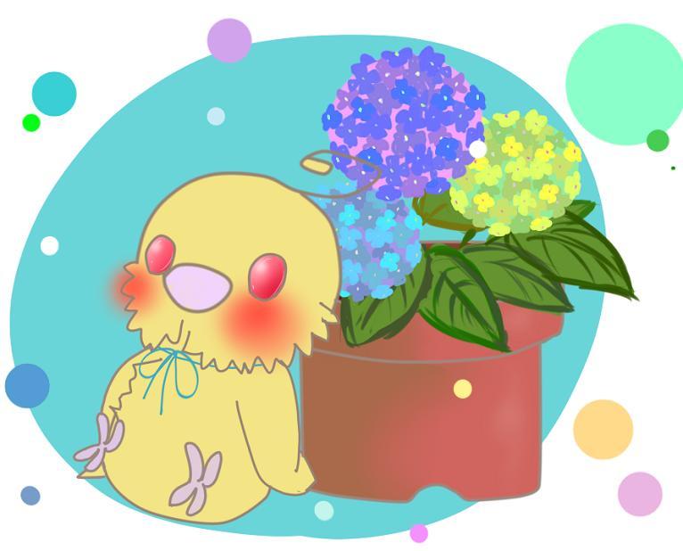 インコと花