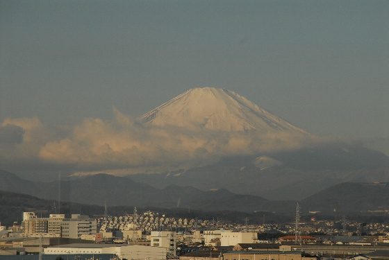 20100116-01.jpg