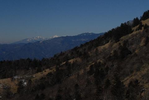 20100124-12.jpg