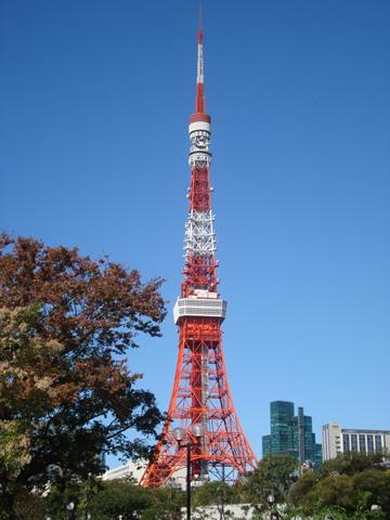 tower11.jpg