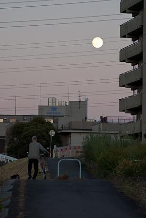 矢田川夕景-1