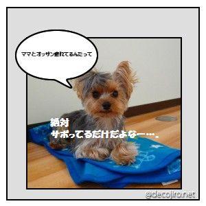 decojiro-20091018-113954.jpg