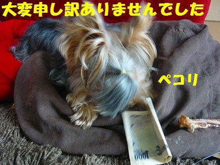 s-2009_0917_104435-P1020022.jpg